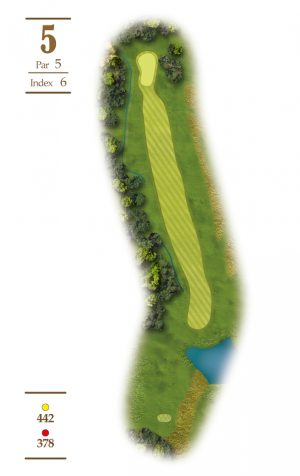 Norrby Golf översikt Hål 5